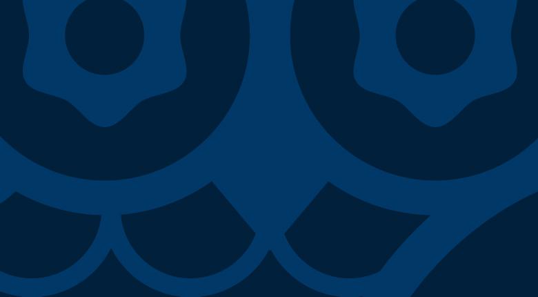 Logo ontwerp huisstijl, vormgeving utrecht Blue Owl