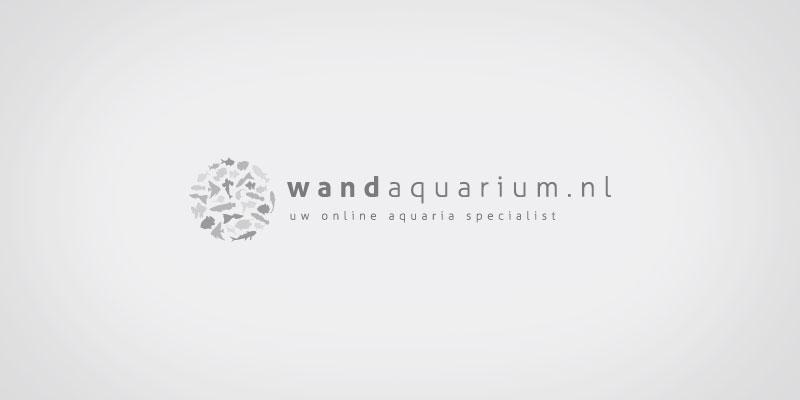 Wandaquarium